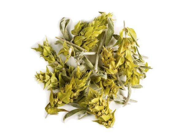 Greek Mountain Tea (Sideritis Ironwort)